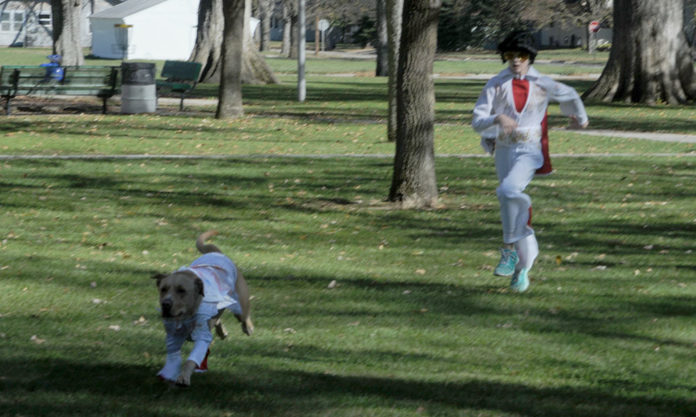 Elvis has left the building. Hayley Stahn chases Hank—both resplendent in their Elvis costumes—through North Park on the way to Saturday's pet costume contest sponsored by the committee working to re-open the State Theater in Central City. Hank had definite ideas about who was in control of this particular situation.